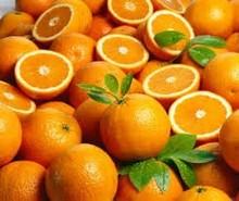 Fresh Citrus Fruits (Orange, Mamdarin Orange, Clementine,Lemon)