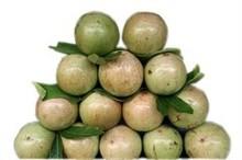 Fresh Star Apple Fruit For Sale