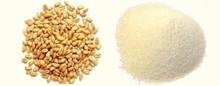 غرامة سميد القمح( راوة)
