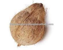 A grade matured fresh coconuts