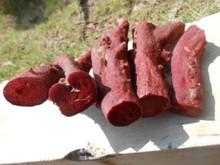coralli neri e coralli rossi
