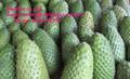 Chirimoya graviola frutas