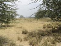 Lake Manyara National Park Land for Sale