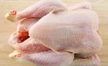 Brazilian frozen halal chicken
