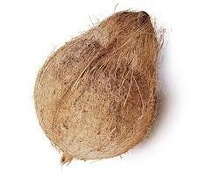 Wholesale in husked coconuts
