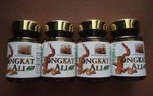 Malaysian Aphrodisiac for Men - Tongkat Ali (Pure Extract) in Capsules