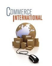fatina commerce international