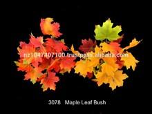 maple leaf bush