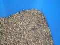 polpa di barbabietola da zucchero in granuli