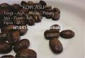 الاندونيسيين القهوة