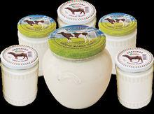 Buffalo milk yoghurt