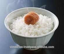 High Quality - Vietnam Japonica Rice 5% Broken