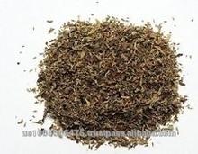 Salvia hispanica Herb