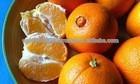 fresh orange in 2014 for sale