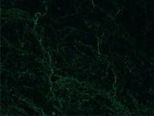 Verde Guatemala - Green Marble