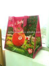 Cheap printed pp tisse, non tisse shopping bags - Vietnam pp woven bag - reusable cabas