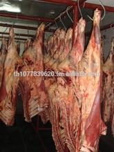 Frozen Halal lamb meat