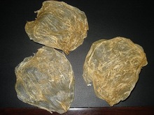 DRIED CAT FISH MAW (Thin Butterfly type , natural shape)