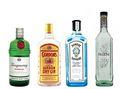 gin marche
