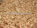 Aserrín y virutas de madera