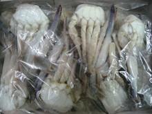 High Quality Frozen Cutting Crab / KING CRAB / BLUE CRAB