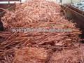 Hot vendre usine de fil de cuivre scrap 99.9%/déchets de cuivre millberry 99.99%