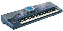 Professional New Korg Pa800 61-Key Professional Arranger Keyboard