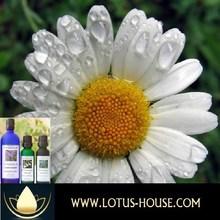 Chamomile Roman - CERTIFIED Organic 100% Essential Oil @ Lotus House (10ml) - Free Shipping Worldwid