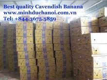 PremiumCavendish Banana leaves for sale from Vietnam