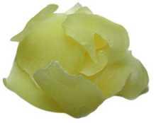 Dried Apple - Slice