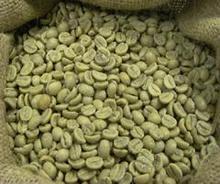 Vietnam robusta chicco di caffè verde, estratto di caffè verde