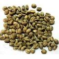 베트남 대량 녹색 커피 콩/ robusa 커피/ arabica 커피