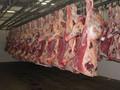 Congelados cordeiro/cabra/carne de carneiro carcaça inteira em 10/6/4 cortes de caminho