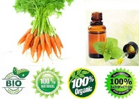sensitive skin care Carrot Seed Oil