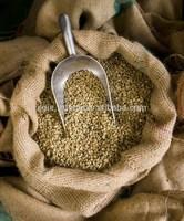Costa Rican Arabica Green Coffee Beans