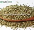 Cosmatic Soap aditivo de alecrim seco folhas
