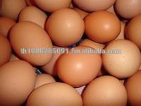 FARM FRESH WHITE/BROWN CHICKEN EGGS