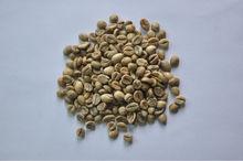 Chicco di caffè vietnamita in polvere/robusta chicchi di caffè verde