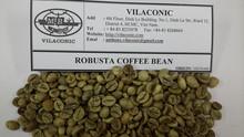 Robusta chicco di caffè scr 18/16/13- Anthony. Vilaconic@gmail. Com