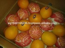 we export fresh orange,tangerines,lowest price