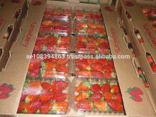 Fresh strawberry carton