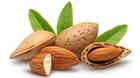 High quality fair priced almonds