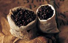 coffee,cocoa