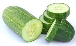 fresh cucumber from Vietnam