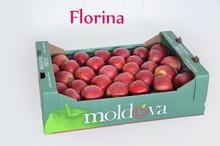Fresh apples, plums, cherries