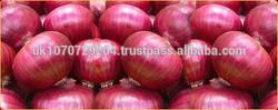 fresh red onions ,fresh garlic/ginger