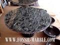 mesa con negro natural fossis amonitas y orthocerases