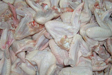 Best Grade Standard Frozen Chicken Wings at cheap prices