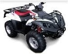 Ice Bear Lightning Kids Side X Side UTV 150cc UTV150A
