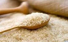 US#1 Calrose Rice, Short Grain Rice, Round grain